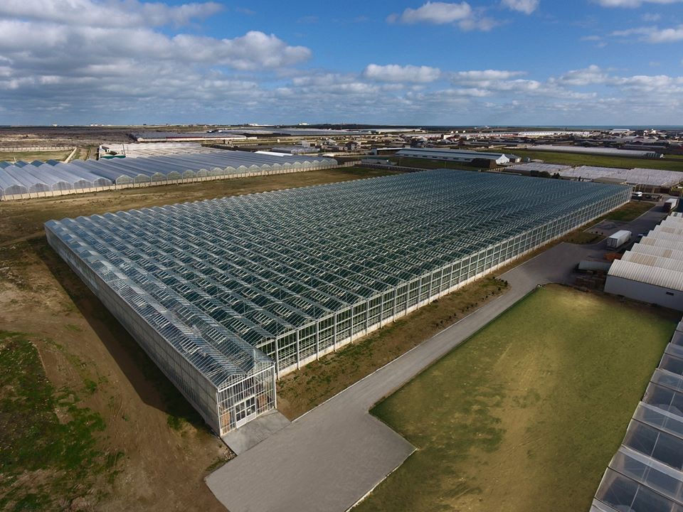 debest schalke greenhouse projects